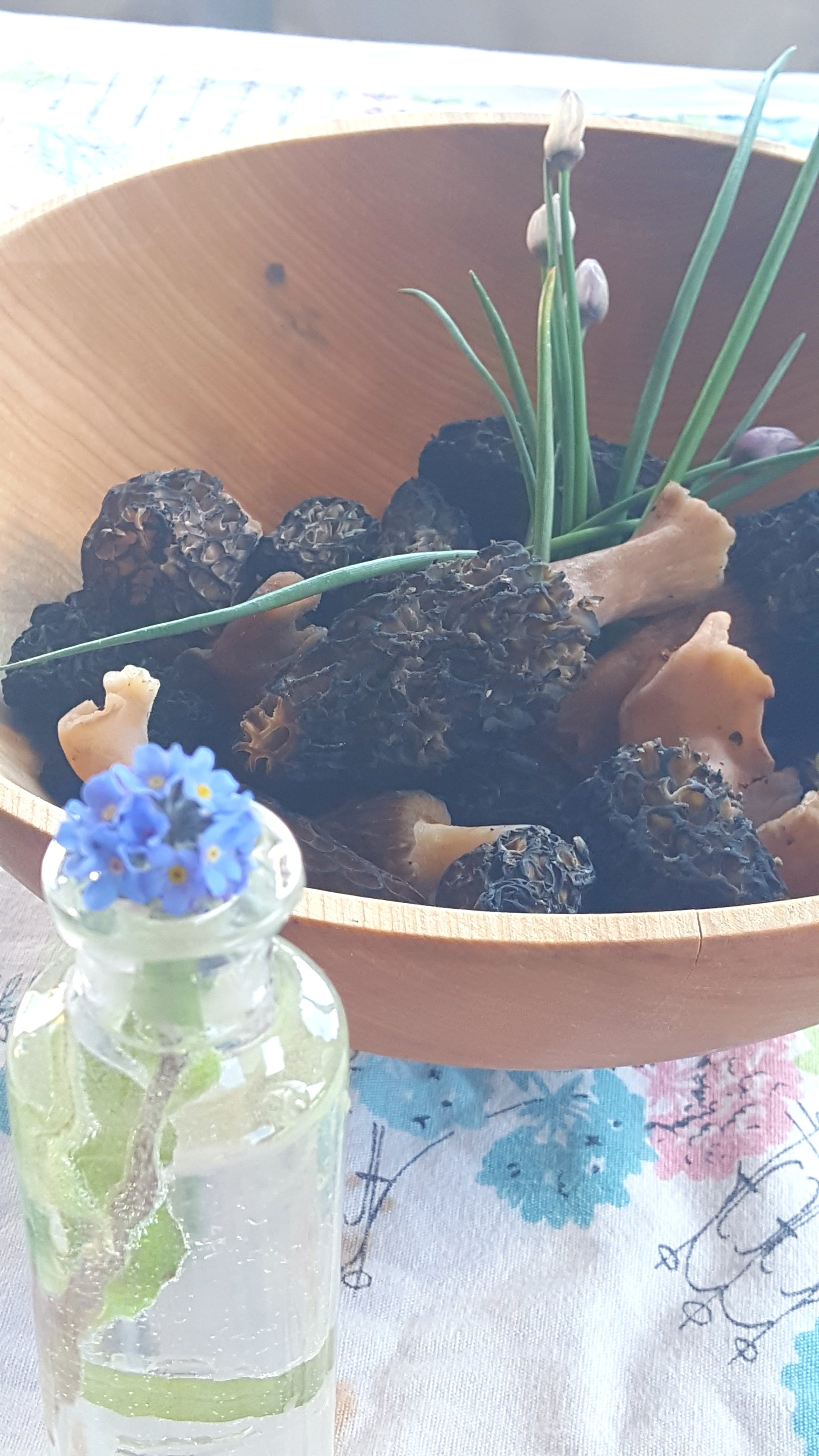 Wild chives, wild morel mushrooms, and Forget-Me-Nots (Alaska's state flower) all grow on our mountainsides. It's a treasure hunt to find the morels, but so worth it! We caught some Tanner crab and had morel mushrooms and Tanner crab omelettes. It doesn't get any better than this.