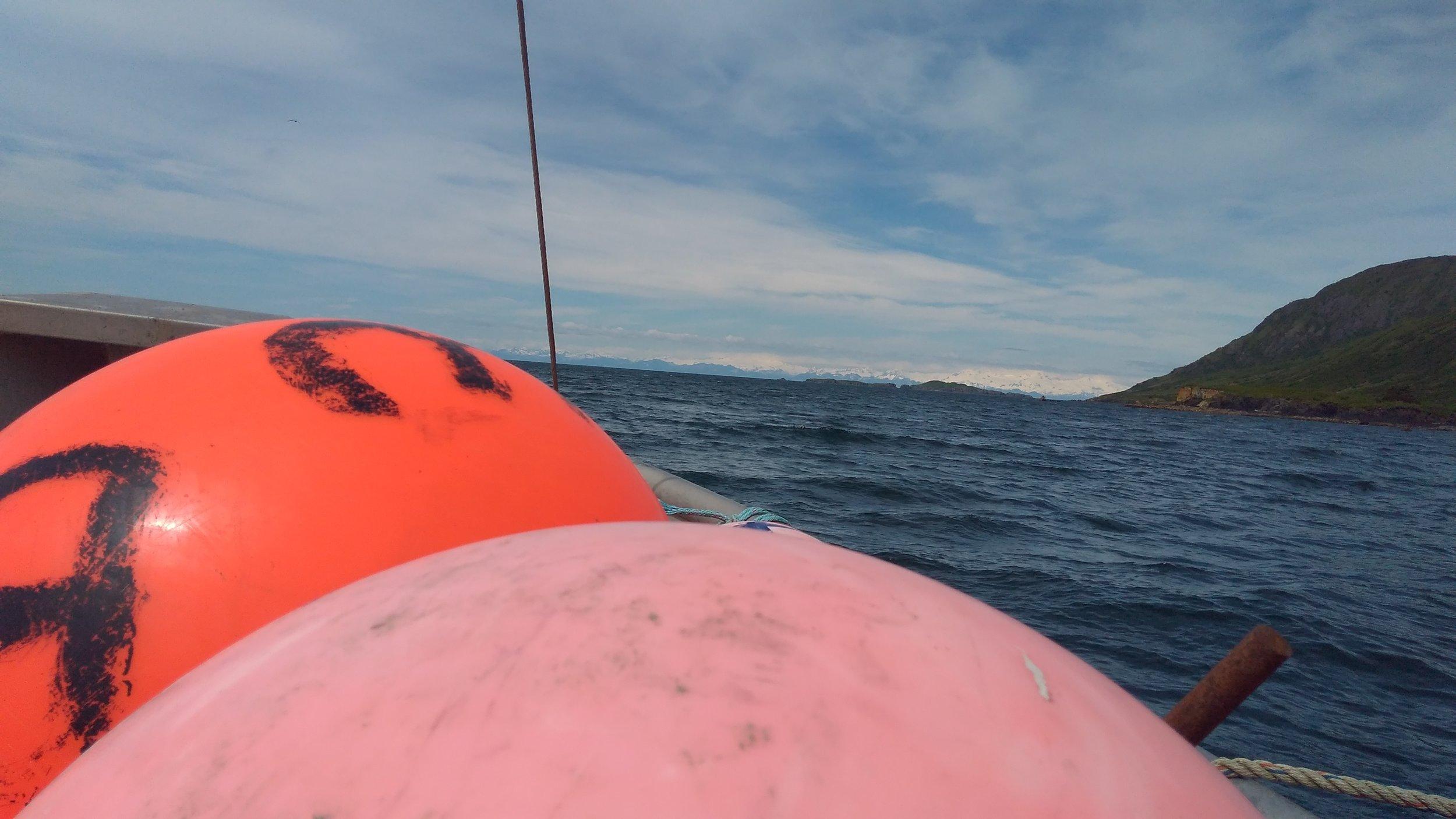 Buoys on the holding skiff