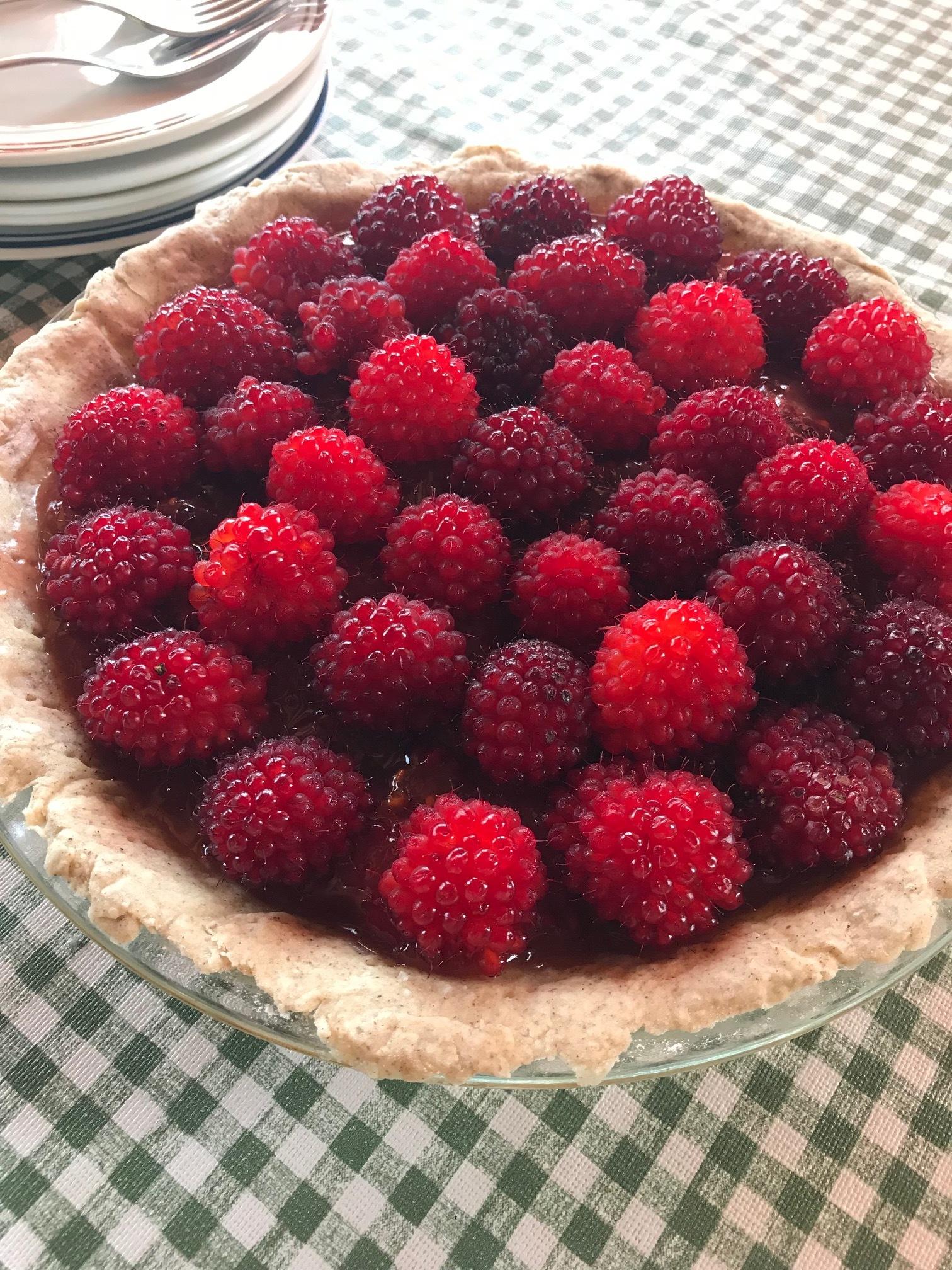 Fresh salmonberry pie … the taste of summer