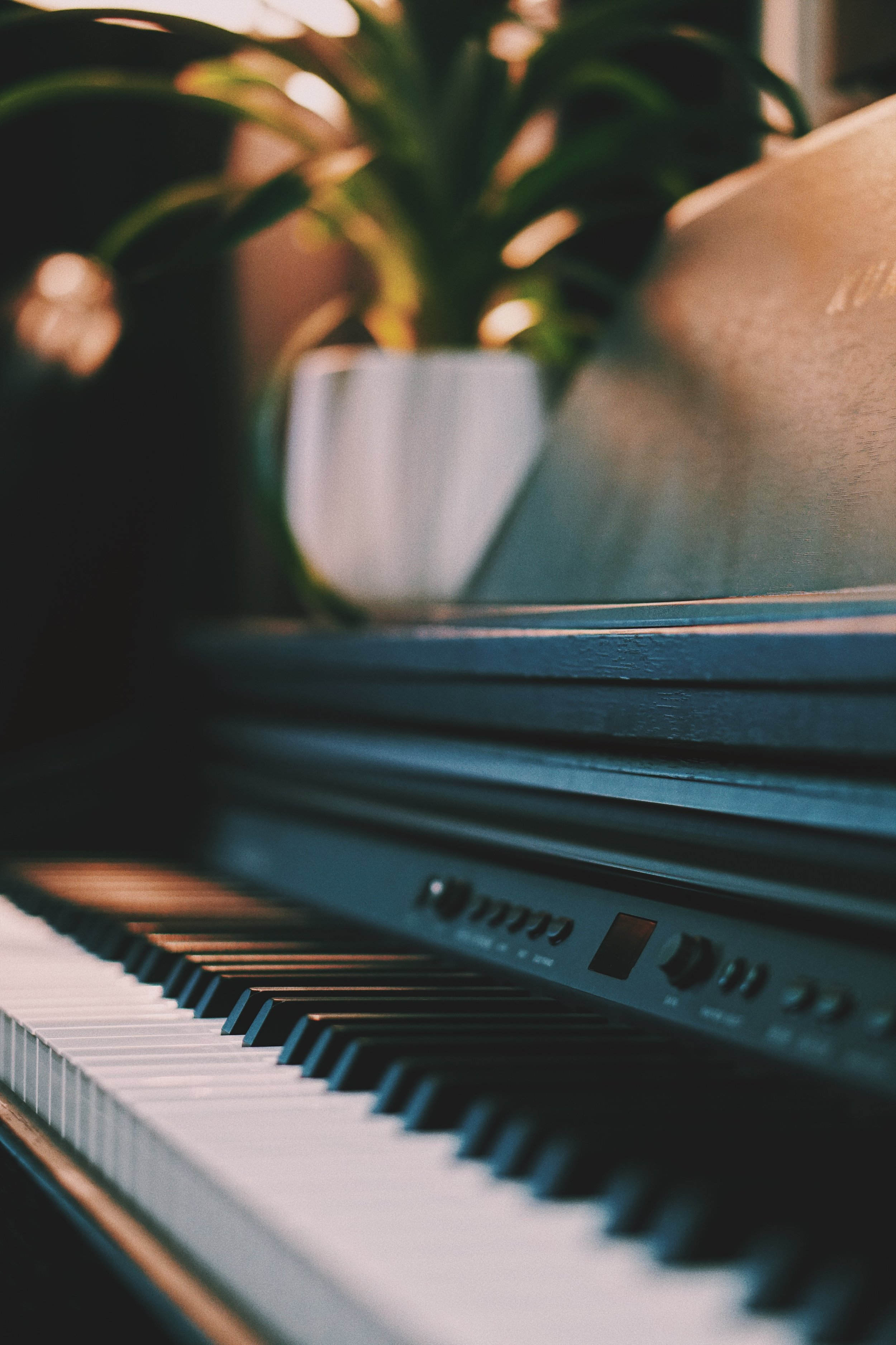 Piano Lessons & Music Theory - Speak the musical language more fluently and surprise yourself with what you can do at the piano!Lessons are held on a weekly, monthly, or as need basis.$40/30 minutes. $60/45 minutes. $80/ 1 hour.PACKAGES:$200/ Four (4) 45 minute sessions$300/ Four (4) 1 hour sessionsClients are responsible for reserving and covering cost of a rehearsal studio.