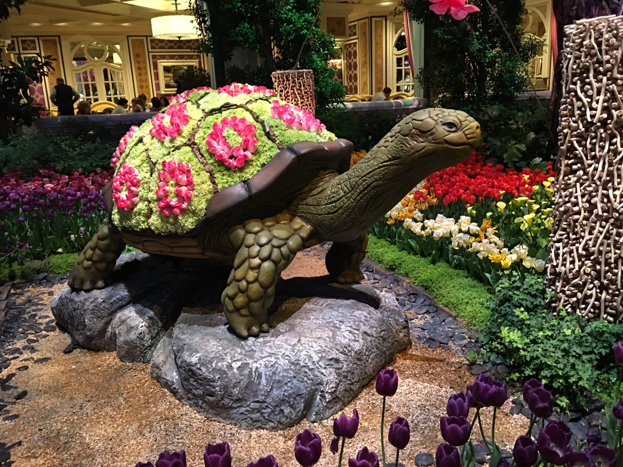 Die «Bellagio Conservatory & Botanical Gardens»-Schildkröte ist mit echten Blumen verziert.