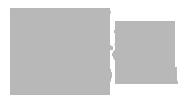 designto-fest-g.png