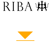 RIBA arrow2.png