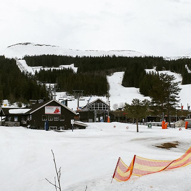 We had a great site visit for new Trysil Alpin Lodge, exciting things to come on this project . . . . #architecture #design #sitevisit #resort #mountains #ski #norway #scandinavia