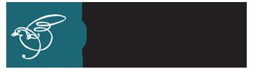 pool-logo1.png