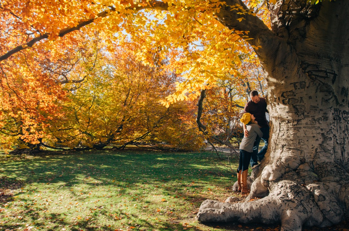 tree_autumn_park_couple_fall-1329649.jpg!d.jpg