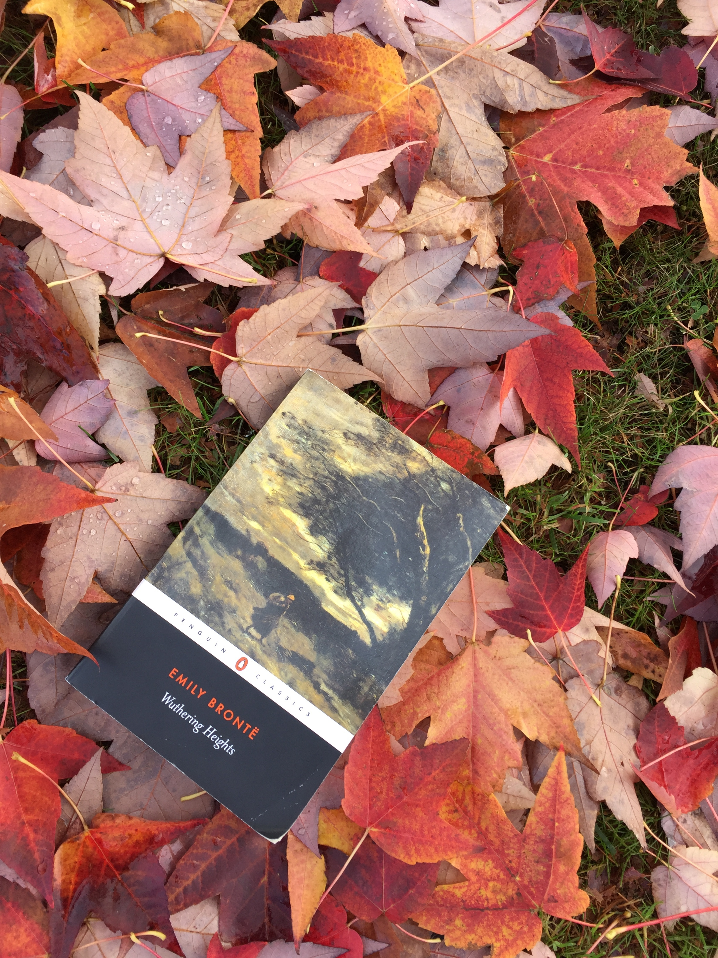 Classic of the Month: Wuthering Heights