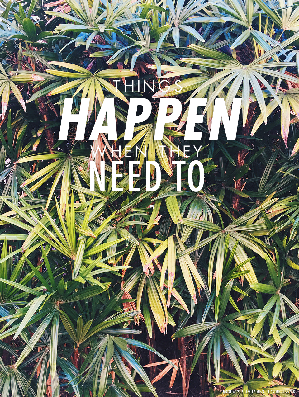 Things Happen When They Need To // It's Me, Lizzy B - Musings on Life, Business, & The Pursuit of Everyday Joy // Personal blog of Lizelly Meza from Lizzy B Loves