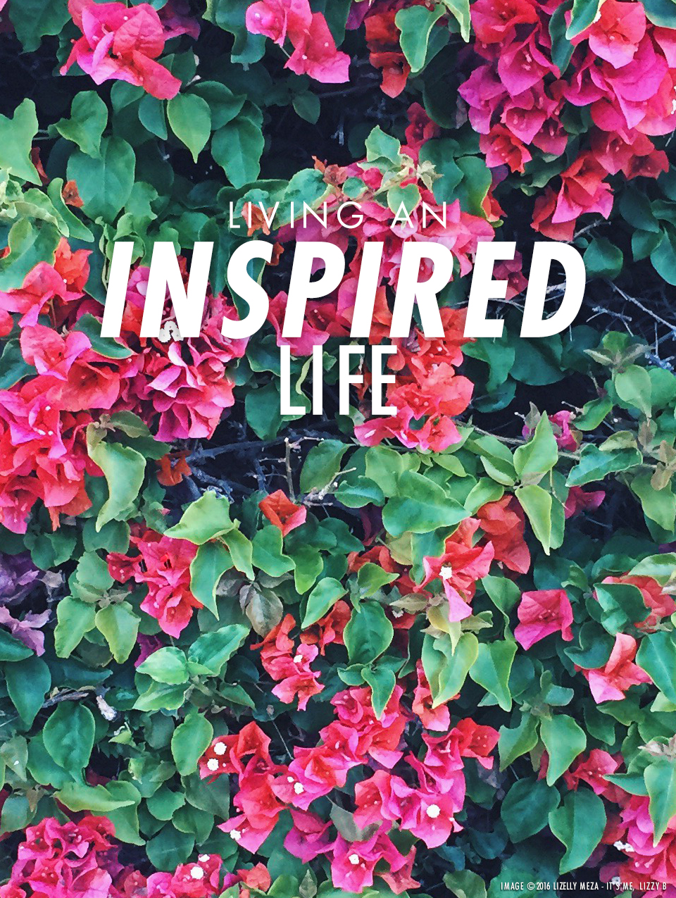 Living an Inspired Life vs. Searching for Inspiration // It's Me, Lizzy B - Musings on Life, Business, & The Pursuit of Everyday Joy // Personal blog of Lizelly Meza from Lizzy B Loves
