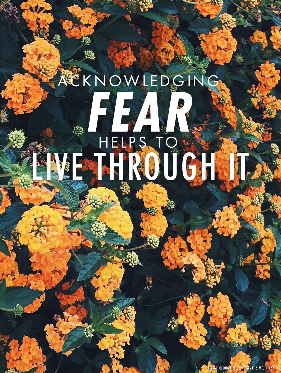Acknowledging Fear Helps to Live Through It // It's Me, Lizzy B - Musings on Life, Business, & The Pursuit of Everyday Joy // Personal blog of Lizelly Meza from Lizzy B Loves