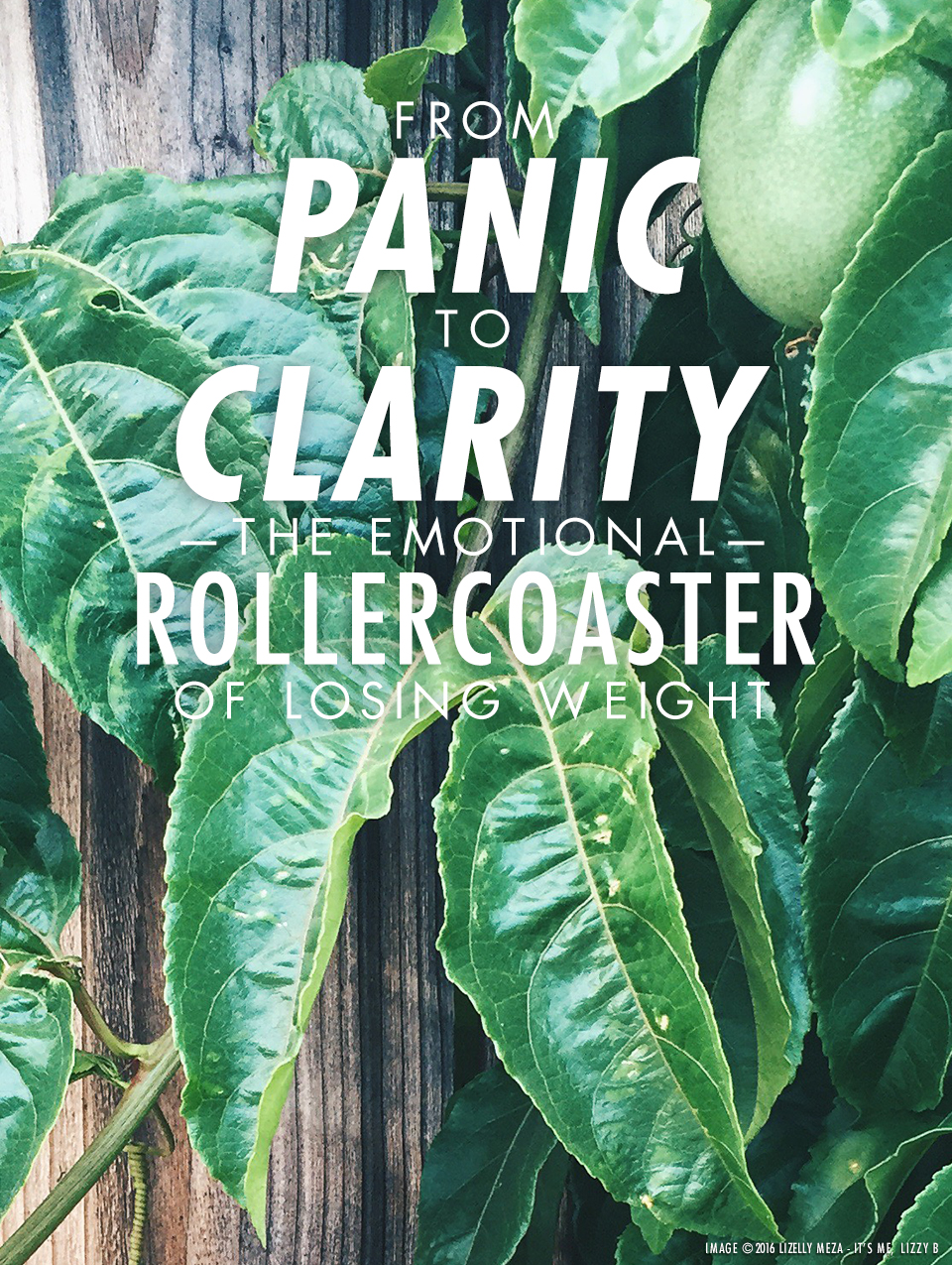 From Panic to Clarity—The Emotional Rollercoaster of Losing Weight // It's Me, Lizzy B - Musings on Life, Business, & The Pursuit of Everyday Joy // Personal blog of Lizelly Meza from Lizzy B Loves