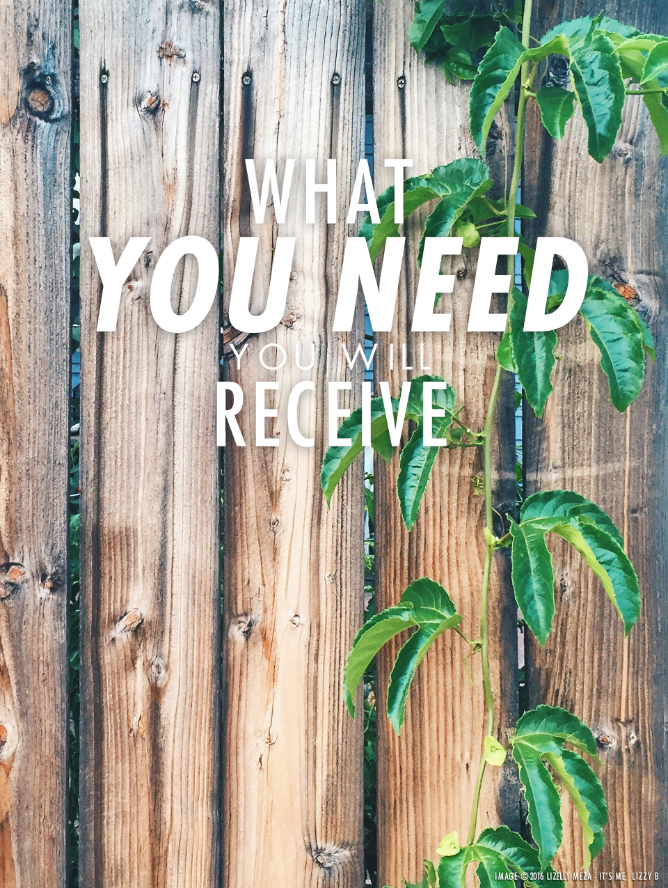 In Perfect Timing—What You Need You Will Receive // It's Me, Lizzy B - Musings on Life, Business, & The Pursuit of Everyday Joy // Personal blog of Lizelly Meza from Lizzy B Loves
