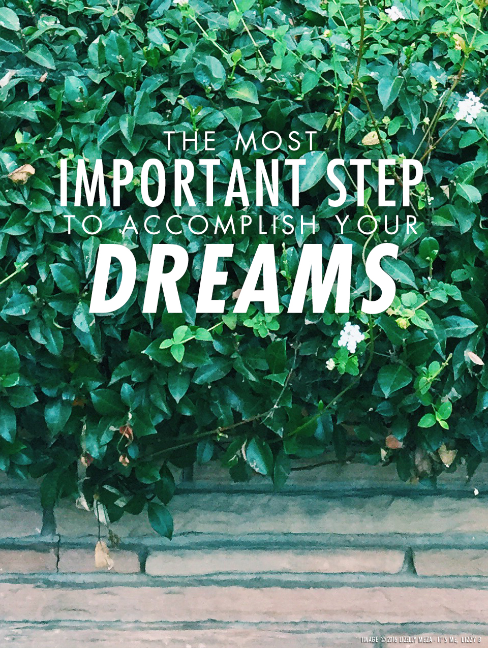 The Most Important Step to Accomplish Your Dreams // It's Me, Lizzy B - Musings on Life, Business, & The Pursuit of Everyday Joy // Personal blog of Lizelly Meza from Lizzy B Loves