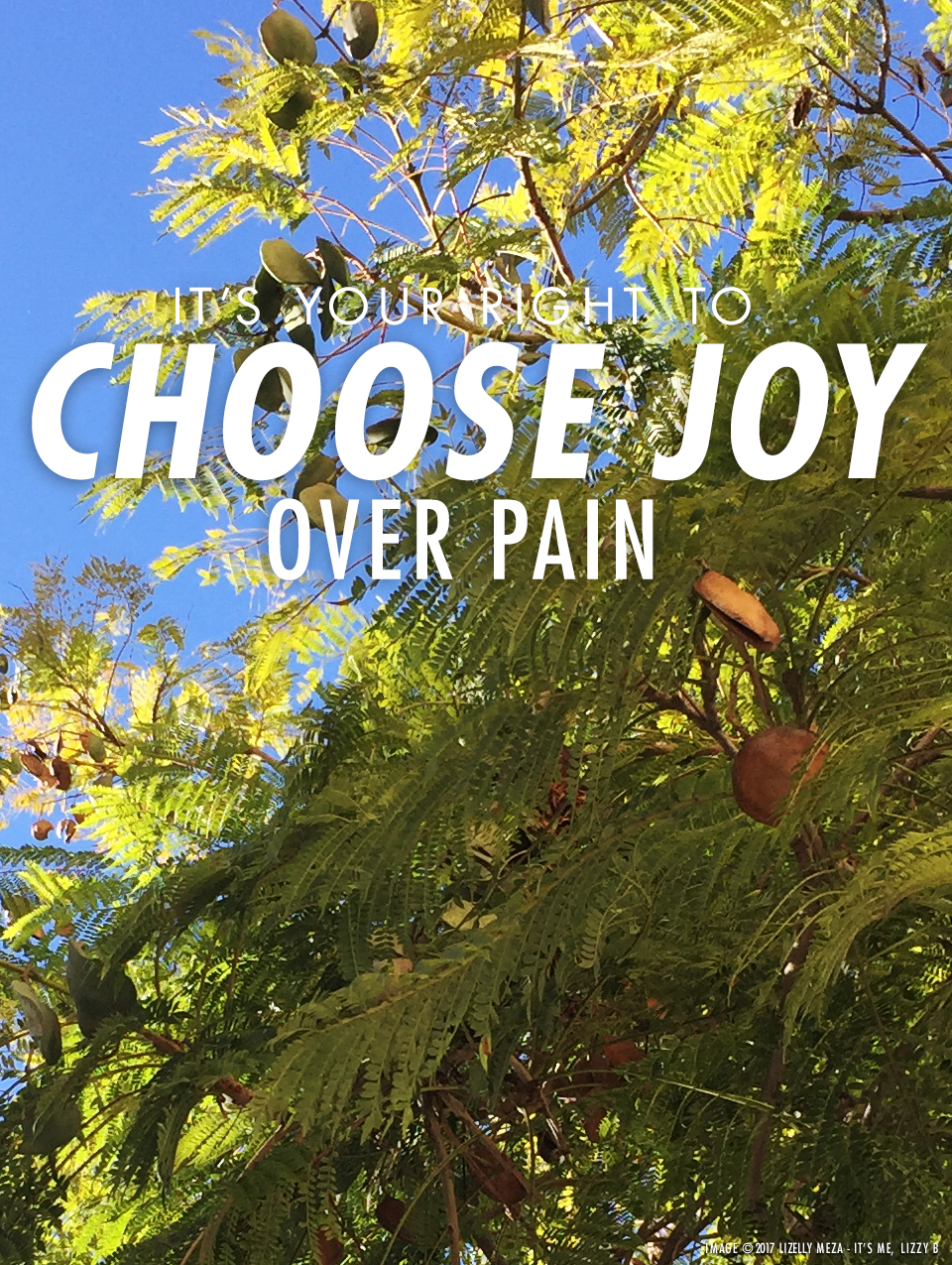 Your Right to Choose Joy Over Pain // It's Me, Lizzy B - Musings on Life, Business, & The Pursuit of Curiosity // Personal blog of Lizelly Meza