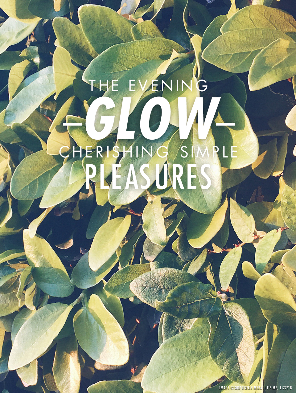 The Evening Glow—Cherishing Simple Pleasures // It's Me, Lizzy B - Musings on Life, Business, & The Pursuit of Curiosity // Personal blog of Lizelly Meza