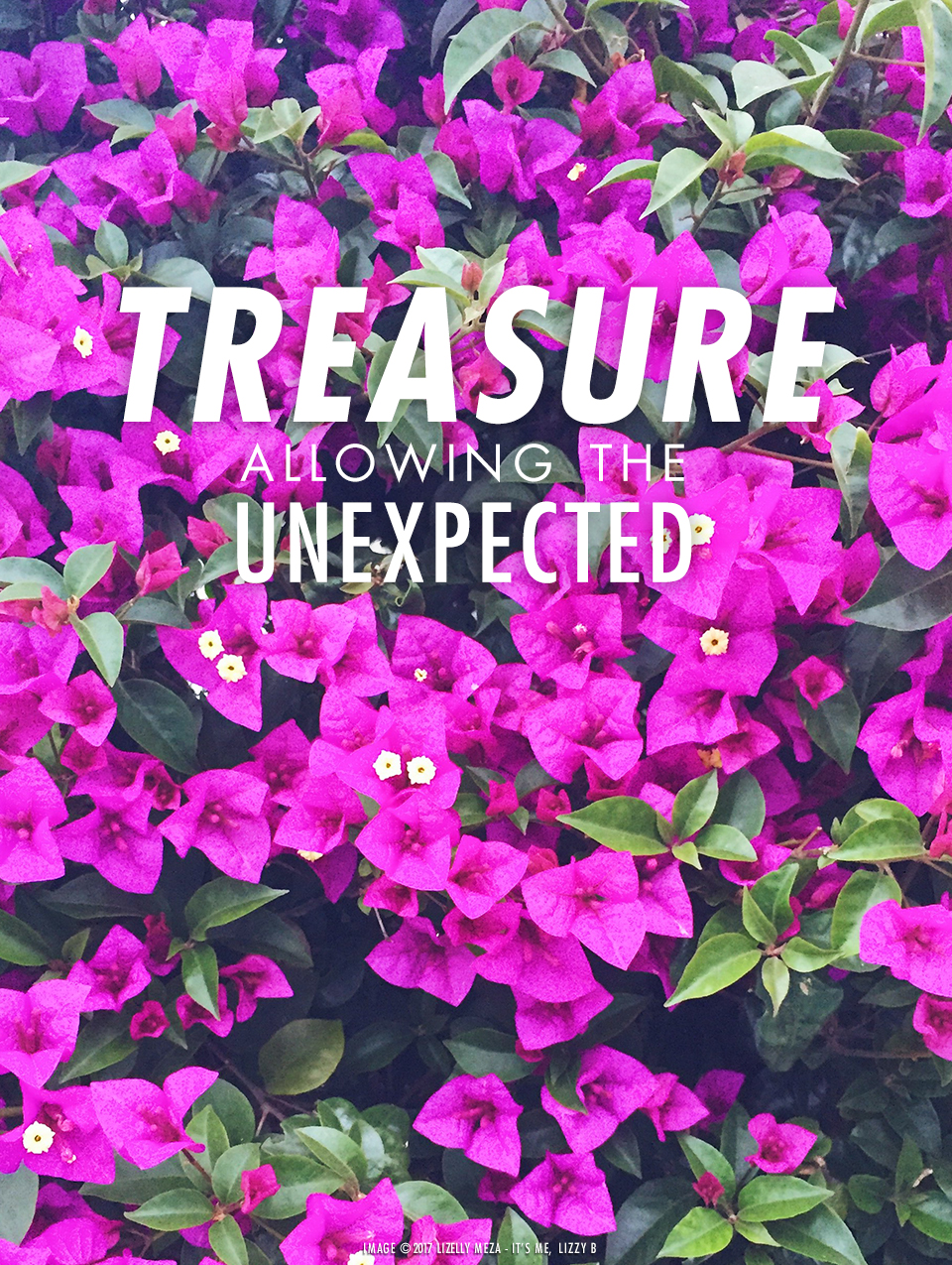 Treasure—Allowing the Unexpected// It's Me, Lizzy B - Musings on Life, Business, & The Pursuit of Curiosity // Personal blog of Lizelly Meza
