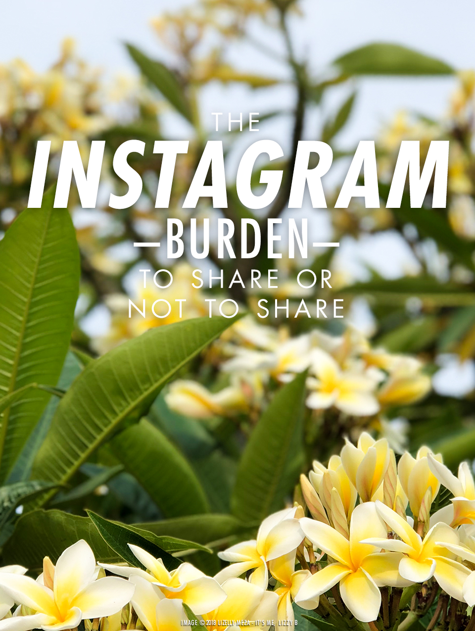 The Instagram Burden—To Share or Not to Share// It's Me, Lizzy B - Musings on Life, Business, & The Pursuit of Curiosity // Personal blog of Lizelly Meza