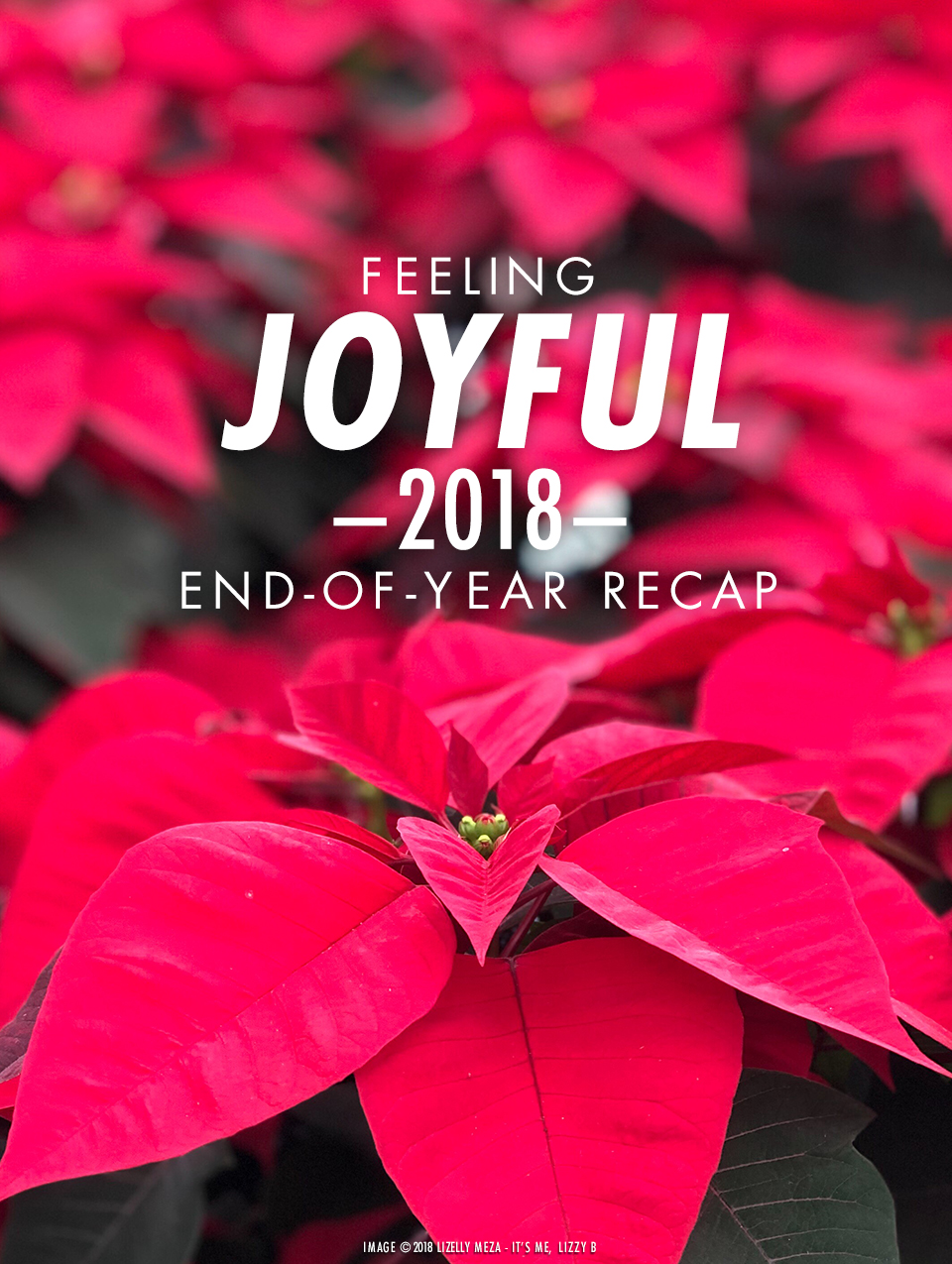 Feeling Joyful—2018 End of Year Recap // It's Me, Lizzy B - Musings on Life, Business, & The Pursuit of Curiosity // Personal blog of Lizelly Meza
