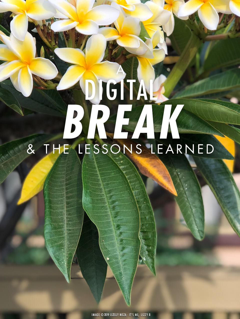 A Much-Needed Digital Break & The Lessons Learned // It's Me, Lizzy B - Musings on Life, Business, & The Pursuit of Curiosity // Personal blog of Lizelly Meza