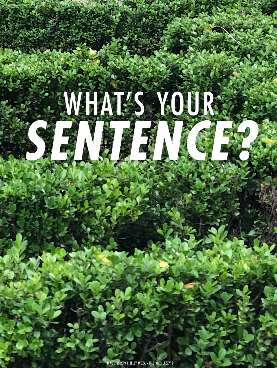 What Is Your Sentence? // It's Me, Lizzy B - Musings on Life, Business, & The Pursuit of Curiosity // Personal blog of Lizelly Meza