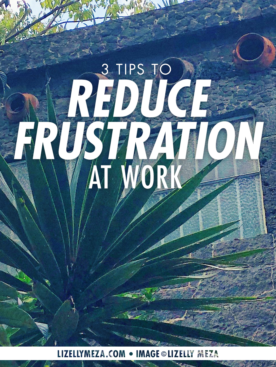 3 Tips to Reduce Frustration at Work While Building Your Dream // Lizelly Meza • Curiosities Allowed — Musings on Life & The Joy of Curiosity