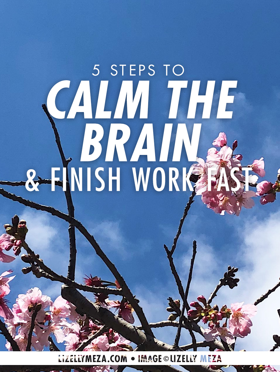 5 Steps to Calm the Brain & Finish Work Fast // Lizelly Meza Blog • Living Life A Little Happier • Life Inspiration Guide & Tips to Help You Live Your Dream Life