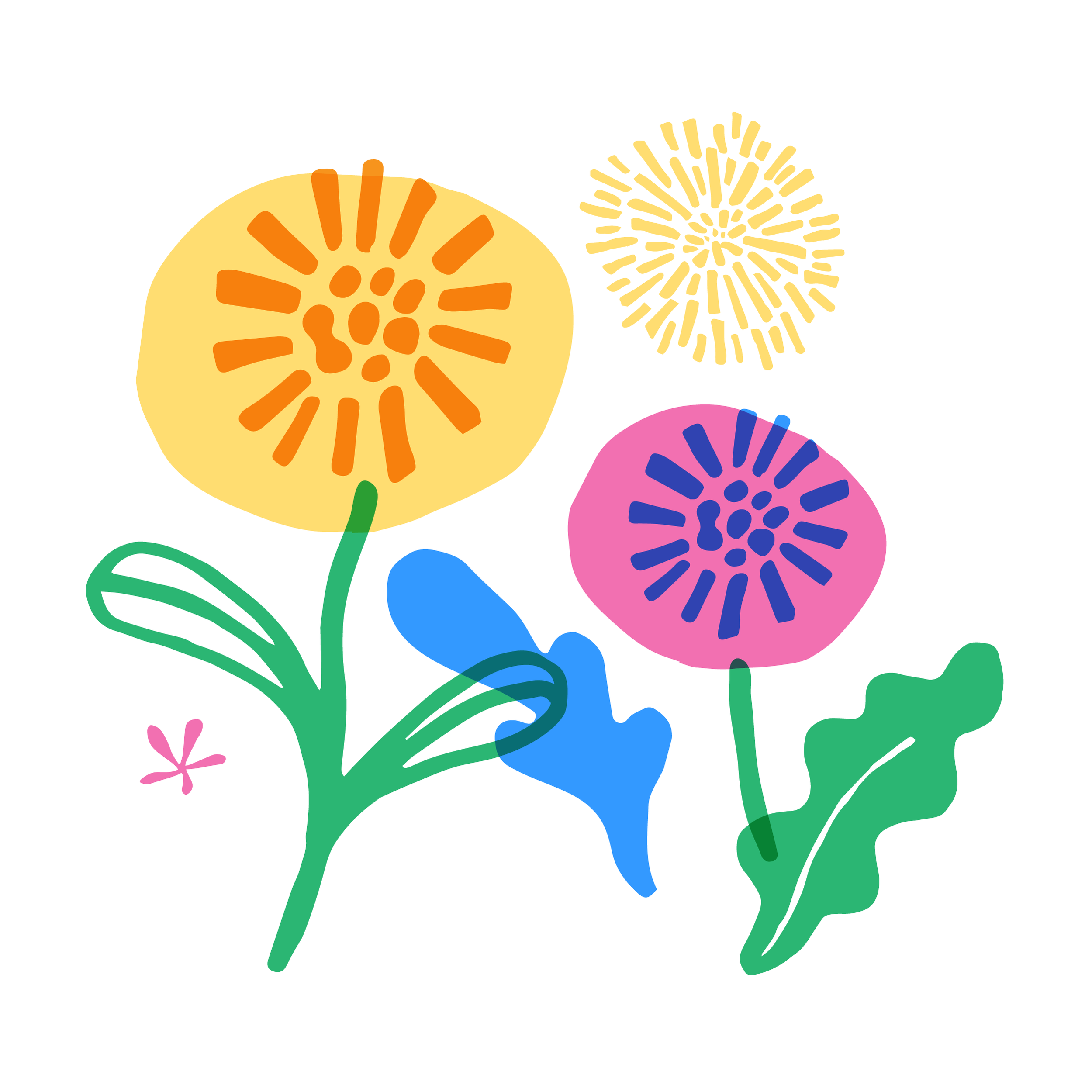 flowers-02.png