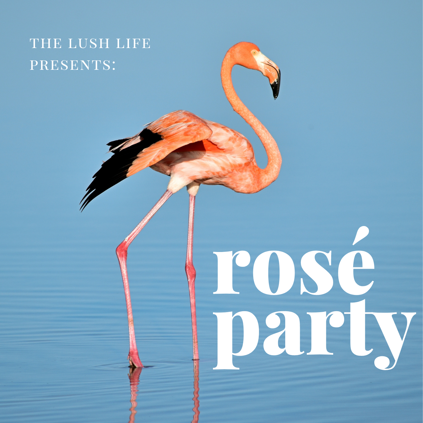 rose-party-playlist.png