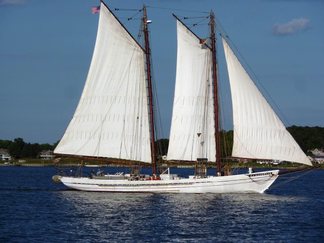 sailboat-incredible 1120.jpg