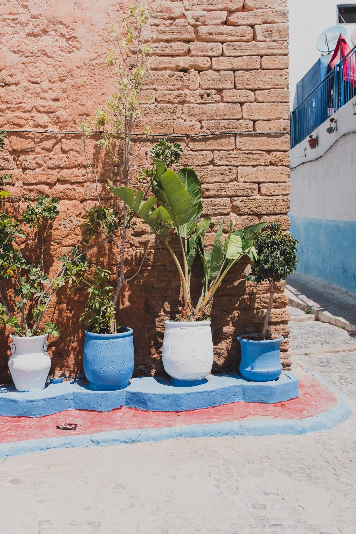 2018 Morocco-18.jpg