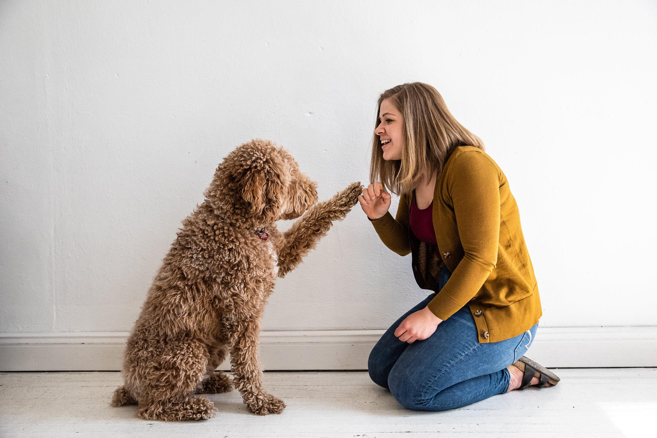DogsofMSP Mothers Day Minis 2018-1053.jpg