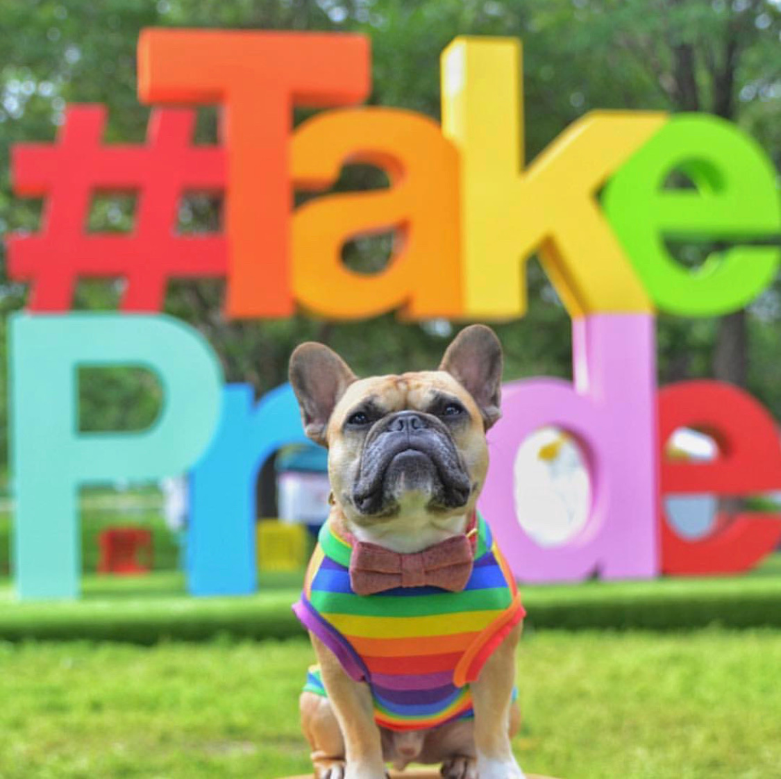 Gus Pride.JPG