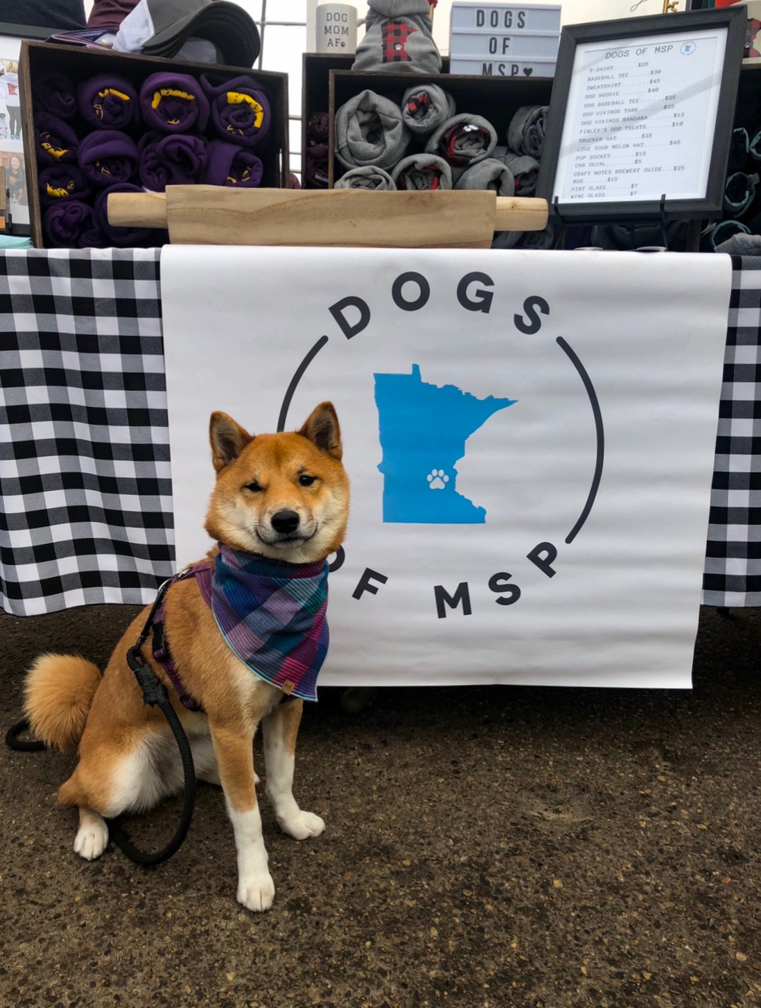 Yuuna Dogs of MSP 2.JPG