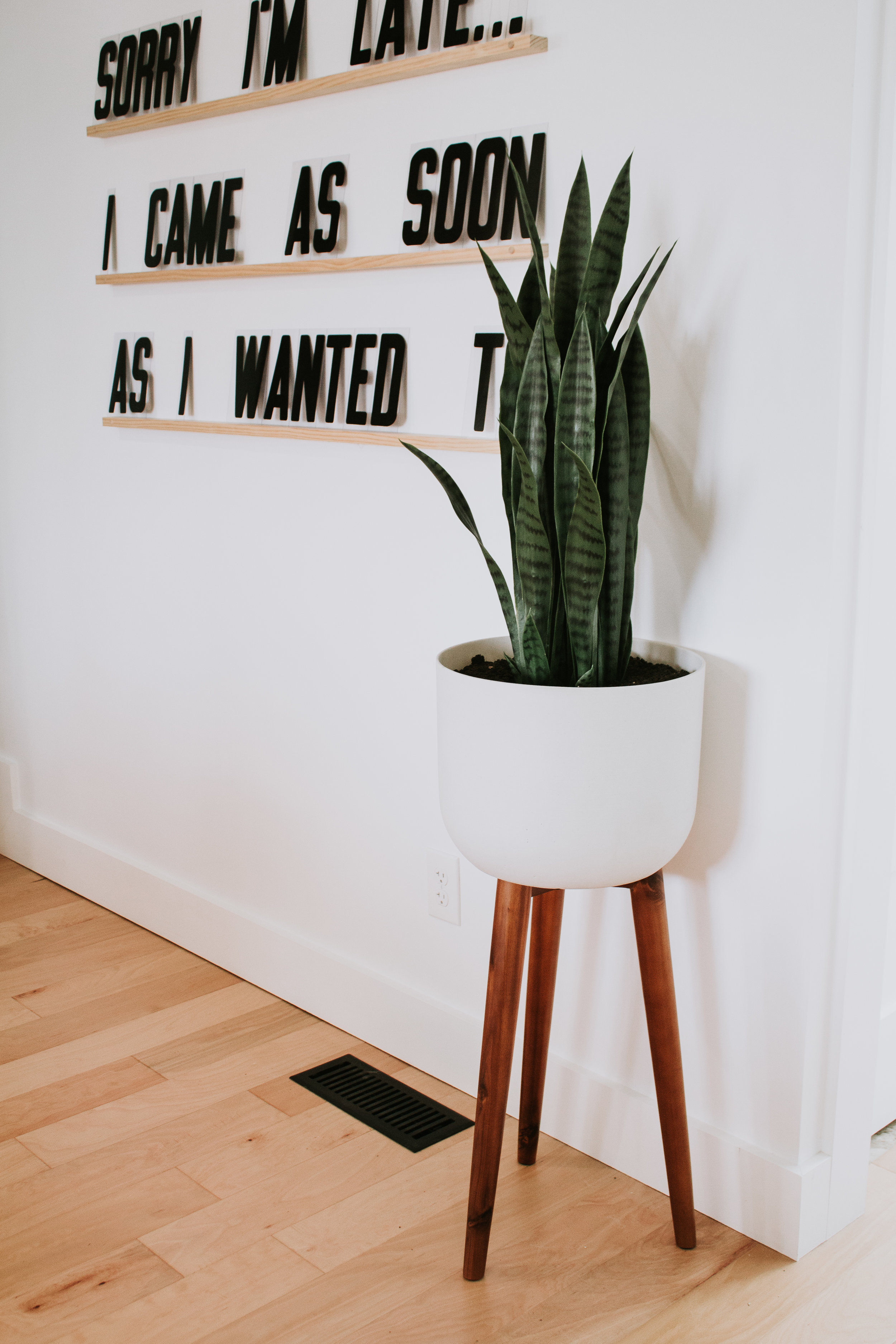 How to make a faux plant look real - DIY by Nadine Stay.  Interior design tips for fake plants. Use supplies you have in your home to make a faux plant look real.