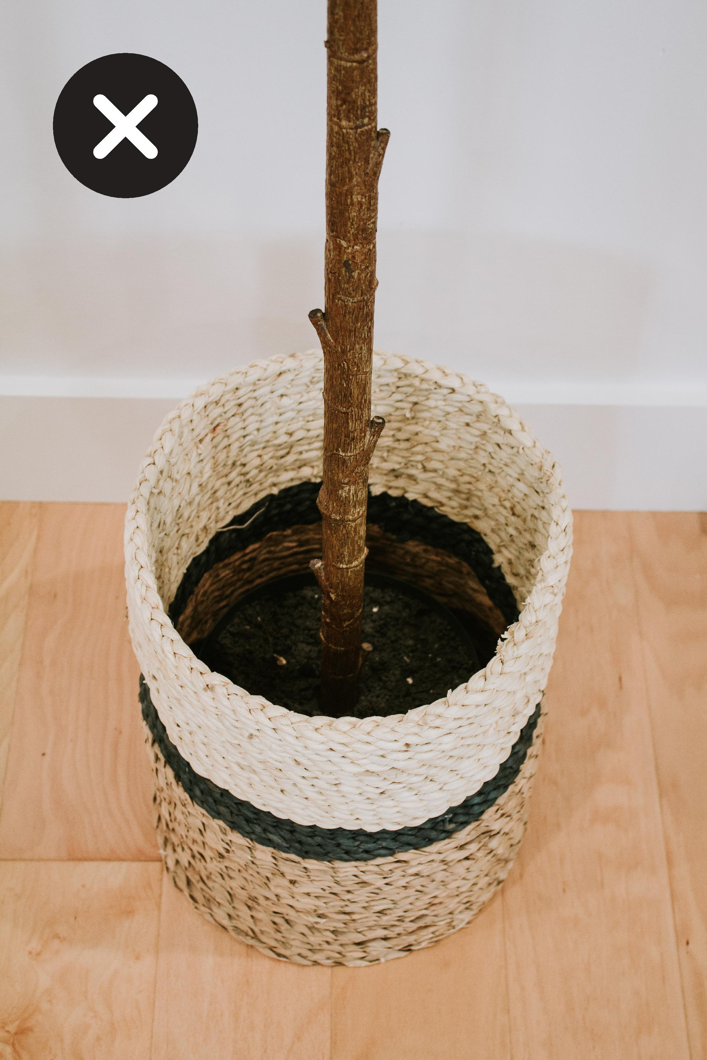 Not ideal: The non decorative pot the faux plant comes with sitting in a woven basket without any soil.