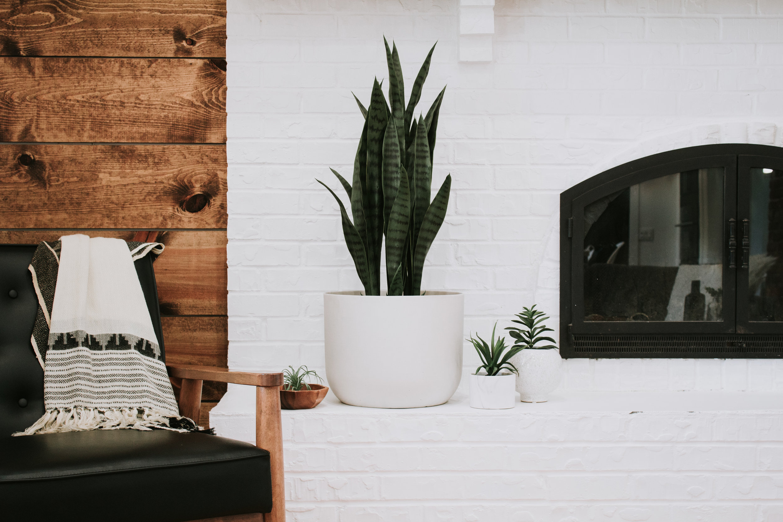 9 Faux Plants That Actually Look Real - Fiddle Leaf Fig, snake plant, birds of paradise palm tree, banana leaf tree, succulents, and faux stems. Fake indoor plants by Nadine Stay