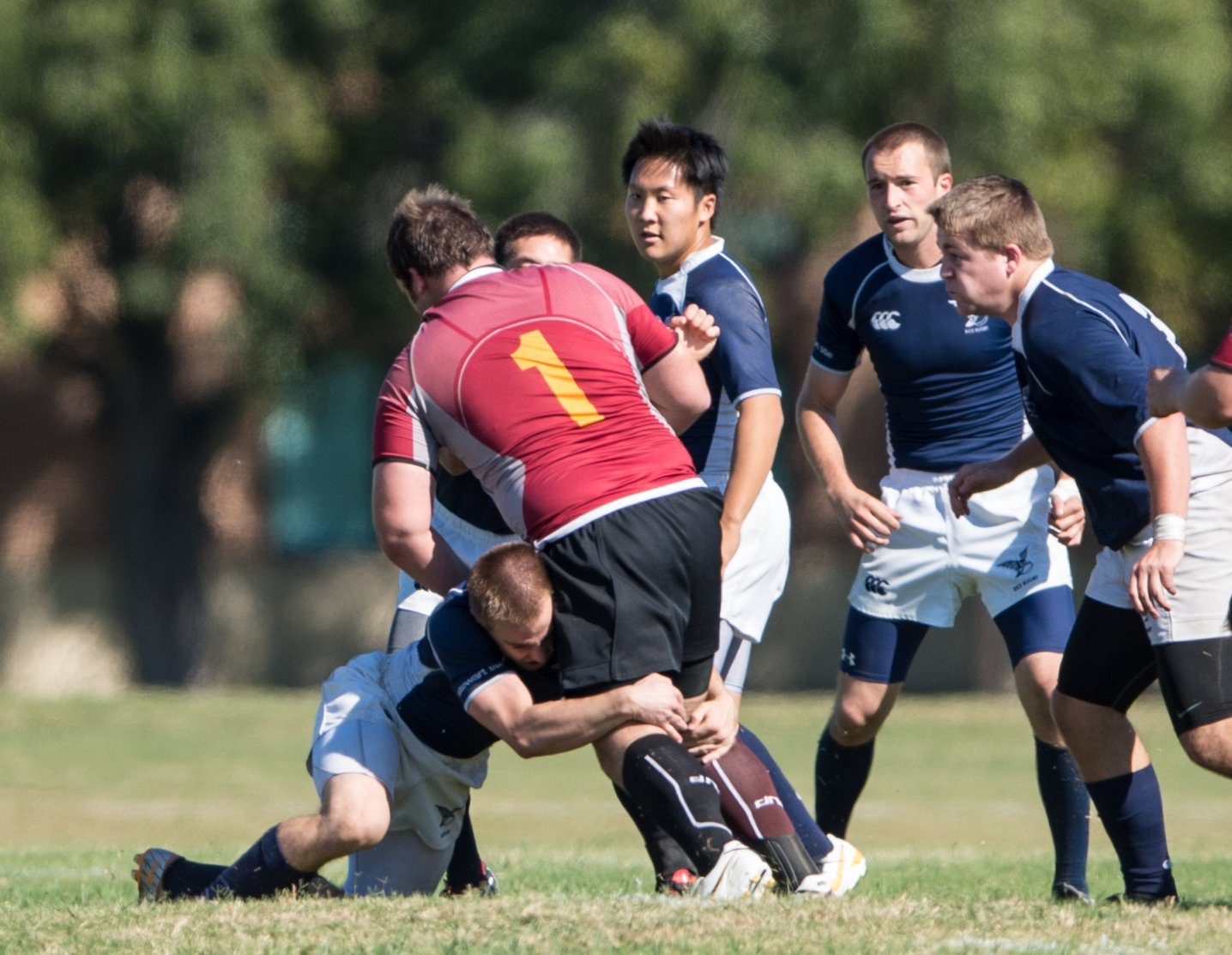 2013.1 Rugby Tackle - 2013.jpg