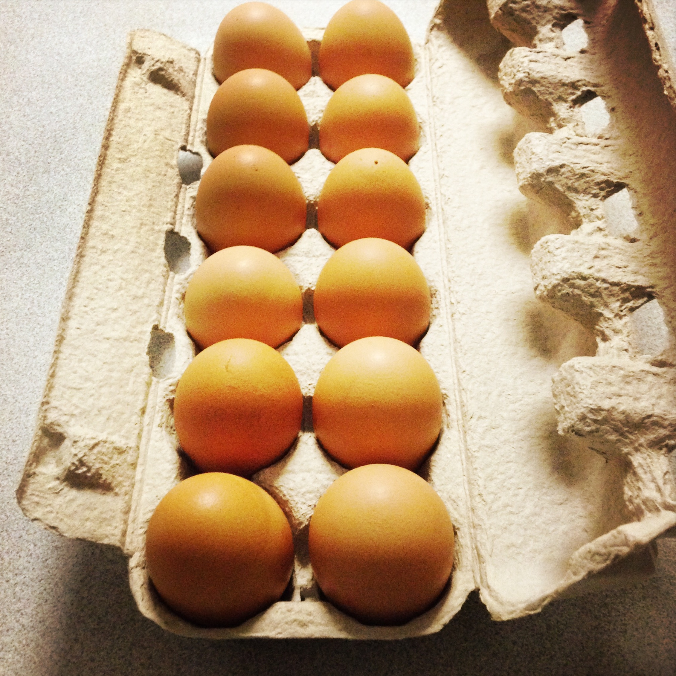 Free range, ethical eggs are worth it.