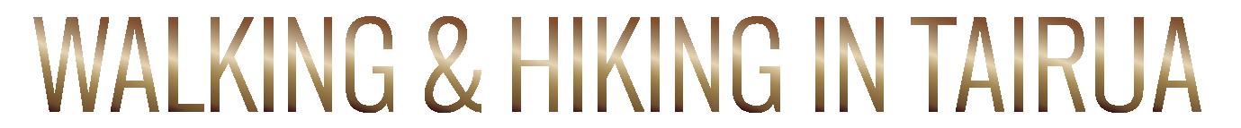 TIC Walking & Hiking in Tairua Text.png