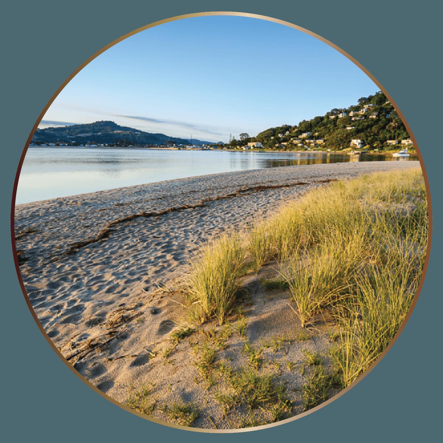 TIC Walking & Hiking Tairua (A).png