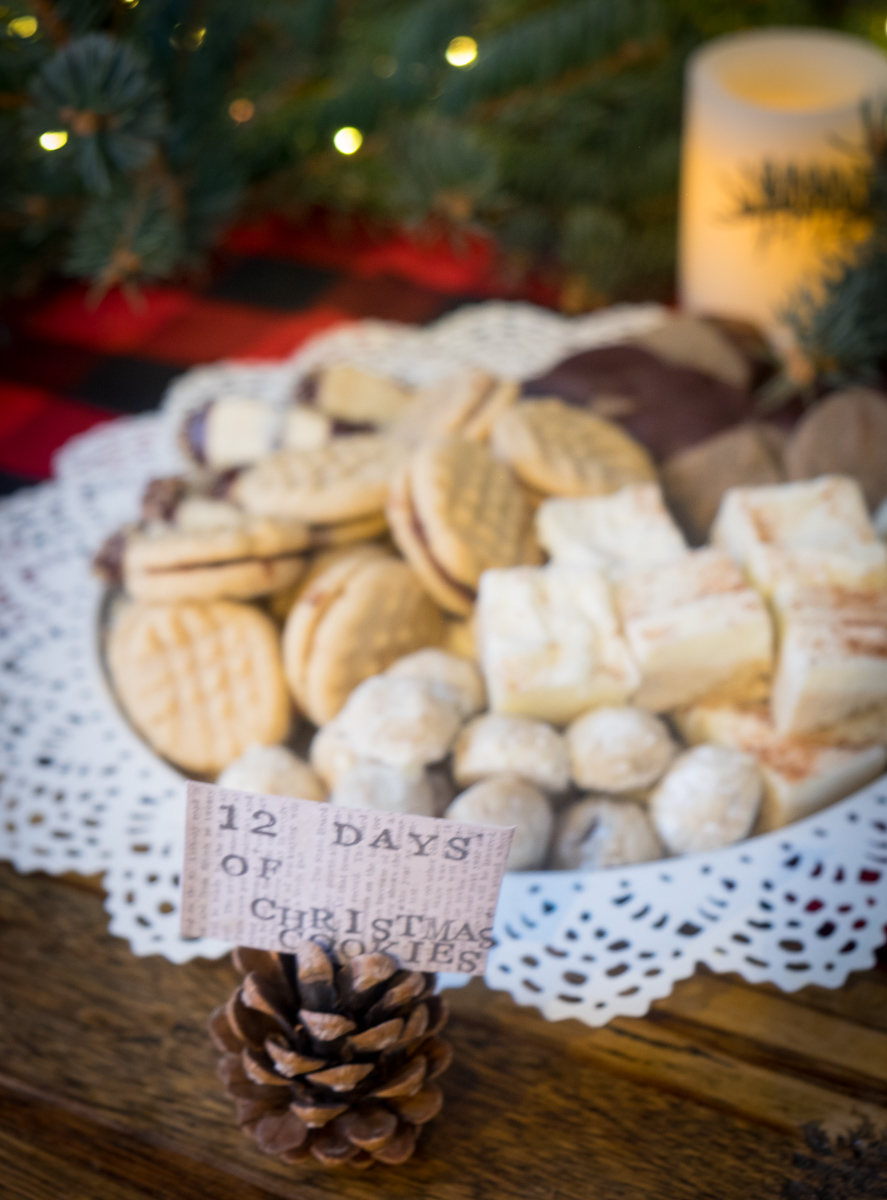christmas-cookies-holiday-party-into the woods