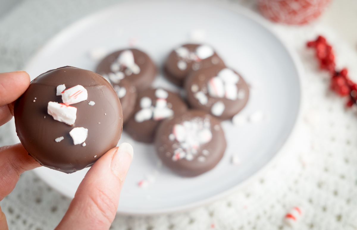 peppermint-mocha-christmas-candy-patty