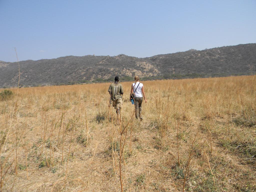 Rachel safari.jpg