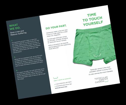 Awareness 3 fold pamphlet