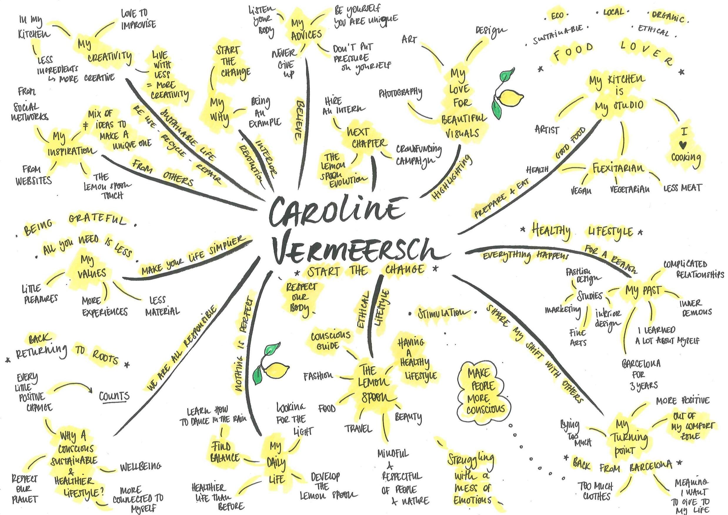 caroline vermeersch mapping.PNG
