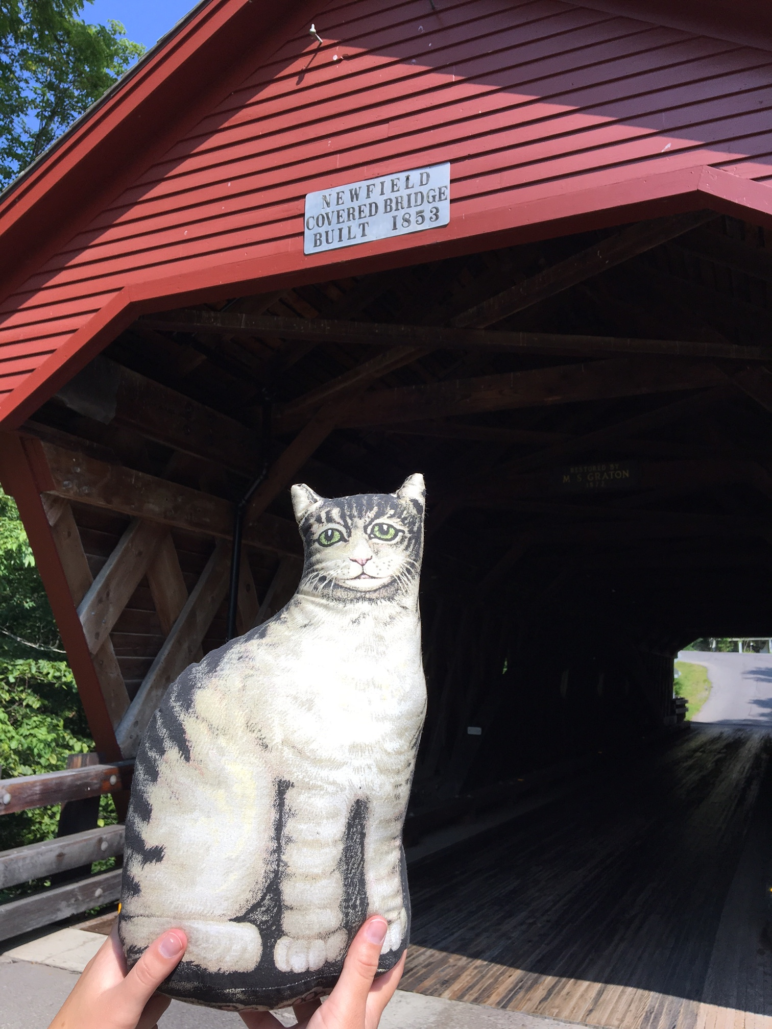 Ithaca-kitty-Newfield Covered Bridge.JPG