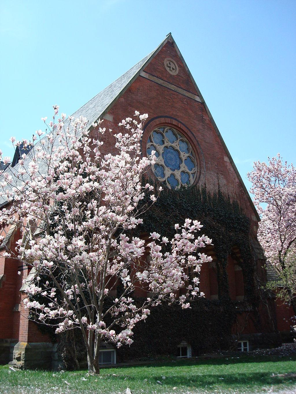 1024px-Cornell_sage_chapel_blossoms copy.jpg