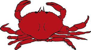 CrabDrawing.png