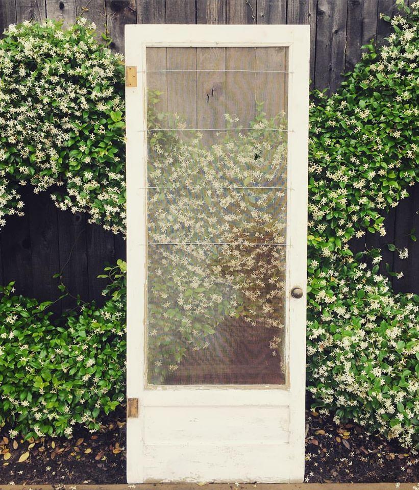 ASSORTED DECORATIVE DOORS