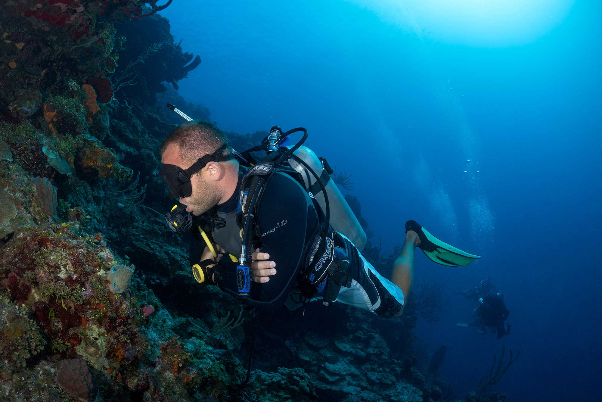 Divemaster intern looking for cool critters.